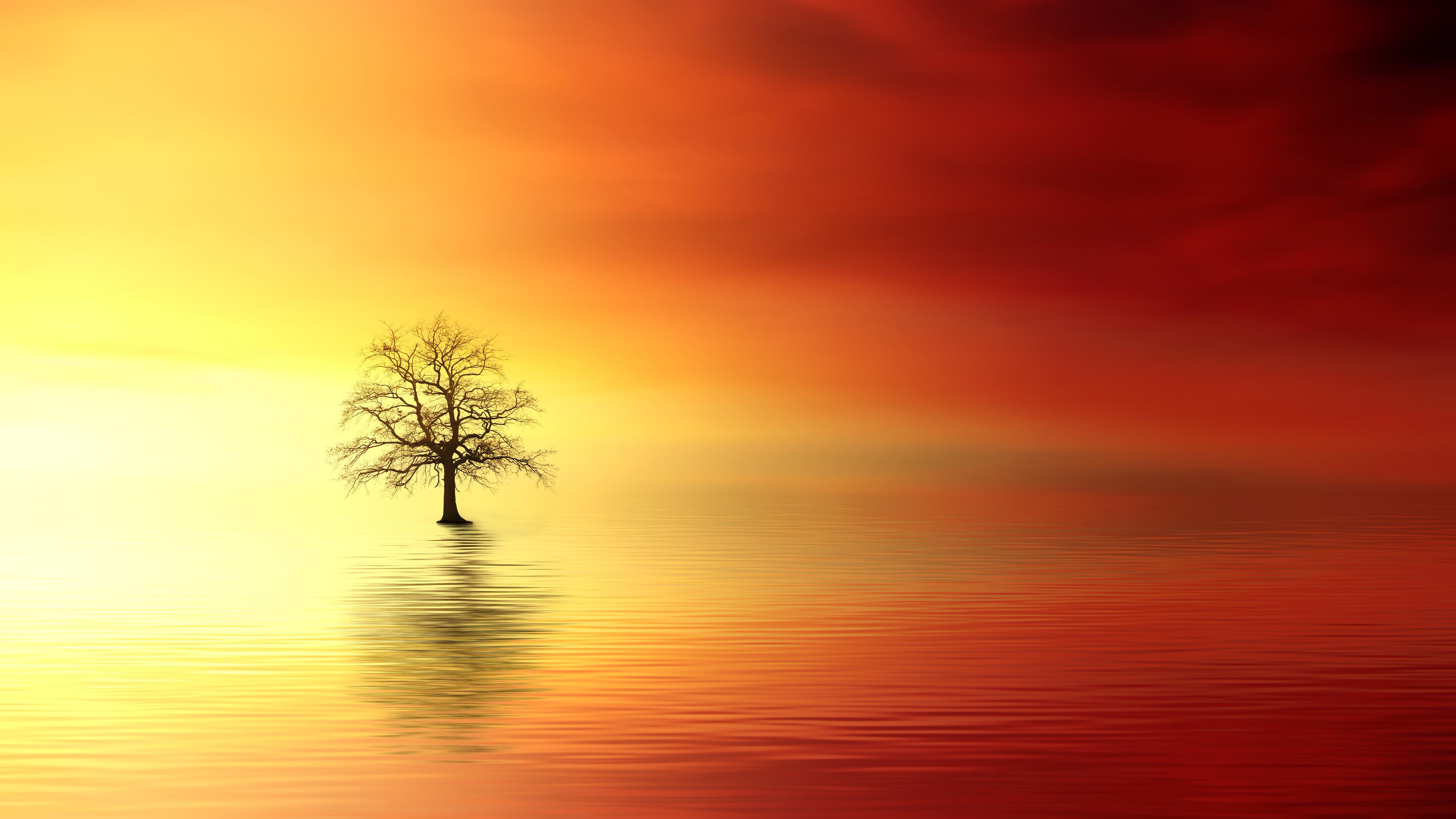 4k Vivid Sunset Wallpaper Uhd 3840 X 2160 Px