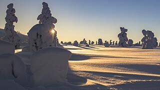 Lapland 4k