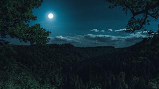 Moonshine 4k