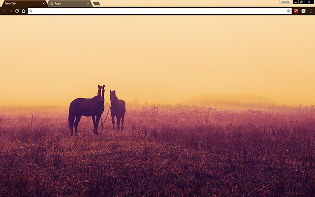 Horses Google Chrome Theme