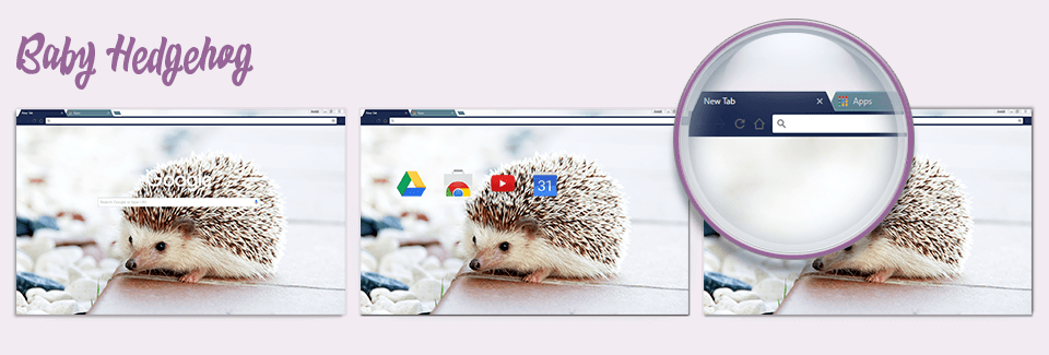 Baby Hedgehog Chrome Theme
