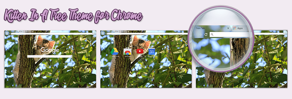 Kitten In A Tree Theme For Chrome