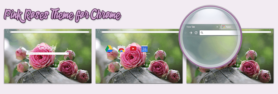 Pink Roses Theme For Chrome