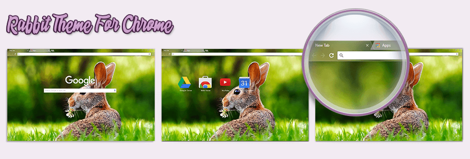 Rabbit Theme For Chrome