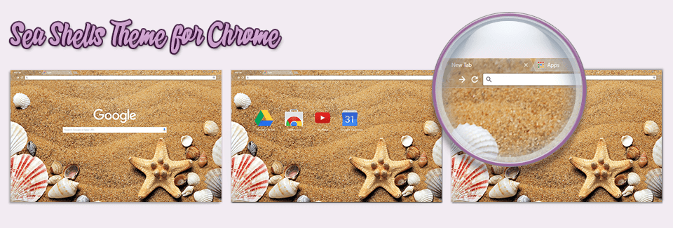 Sea Shells Theme For Chrome