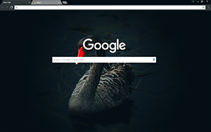 Black Swan Google Chrome Theme