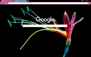 Colorful Flower Chrome Theme