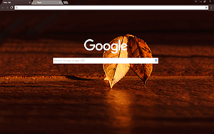 Fall Morning Google Chrome Theme