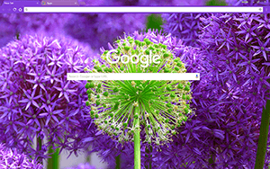 Fresh Blossom Chrome Theme