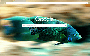 Fishy Google Chrome Theme