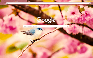 Little Bird Google Chrome Theme