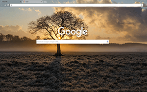 Lone Tree Google Chrome Theme