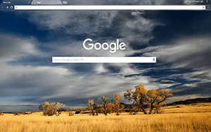 Patagonia Google Chrome Theme