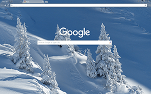 Pure Wintry White Google Chrome Theme