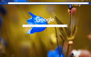 Round Bell Flower Google Chrome Theme