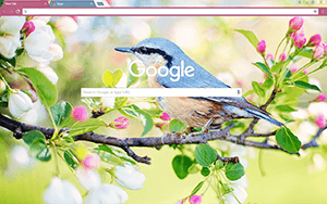 Spring Bird Google Chrome Theme