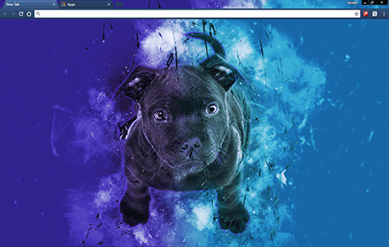 Blue Bull Terrier Chrome Theme