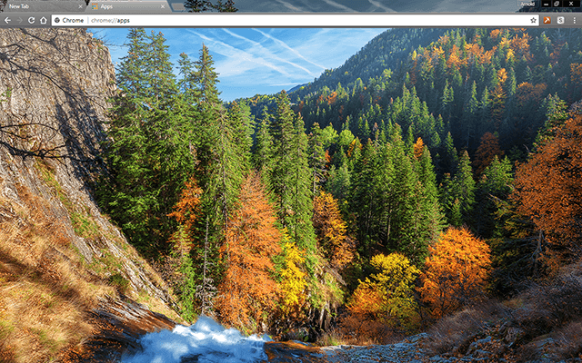Autumn Forest Google Chrome Theme