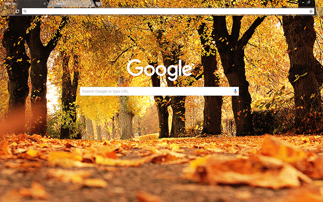 Autumn Trees - Google Homepage