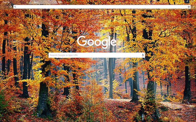 Autumn Woods Google Theme