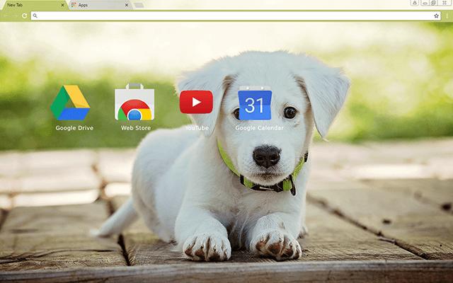 Baby Puppy Chrome Theme