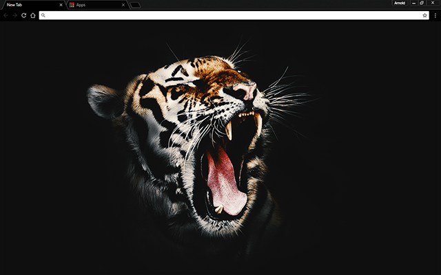 Black Tiger Google Chrome Theme