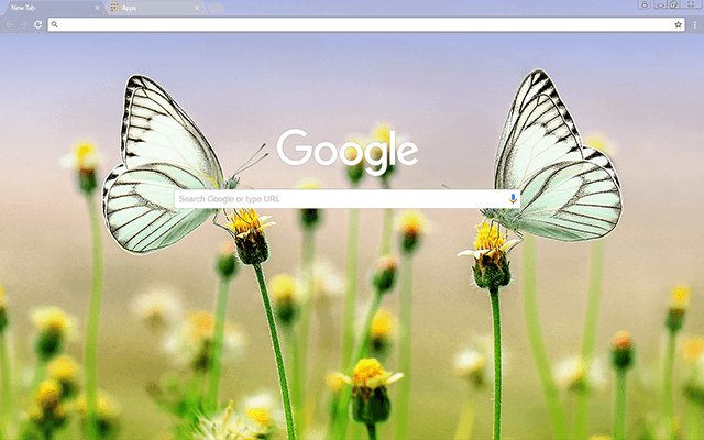 Butterfly Heaven Google Theme