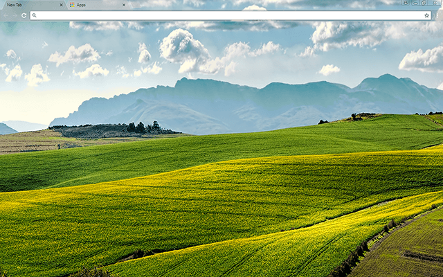 Canola Fields Google Chrome Theme