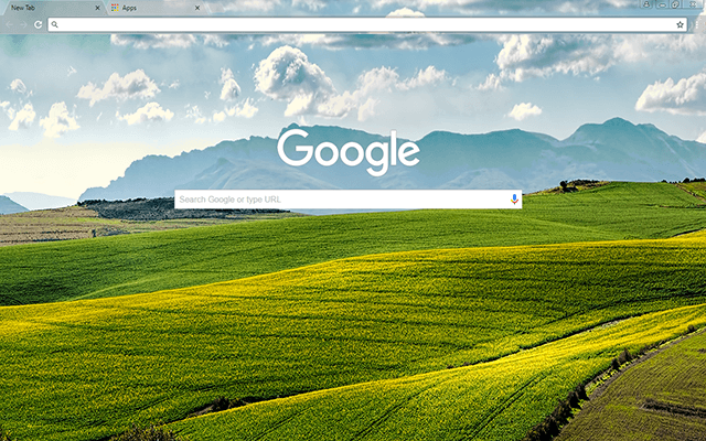 Canola Fields Google Theme