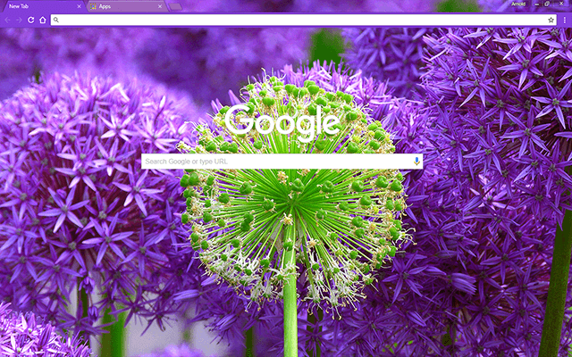 Fresh Blossom Google Chrome Theme