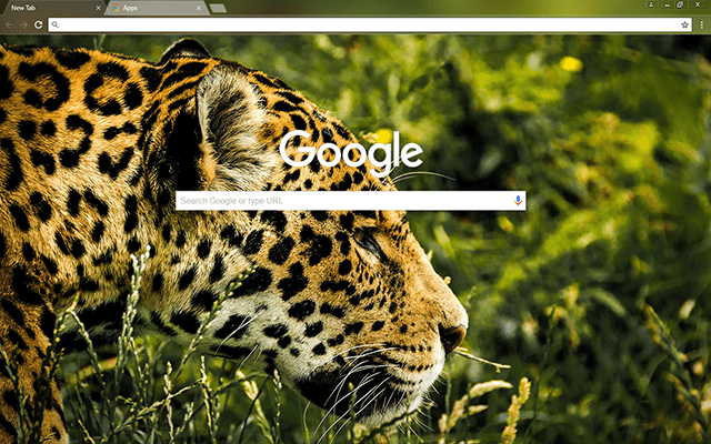 Jaguar Google Chrome Theme