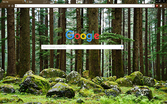 Mystery Forest - Google Homepage