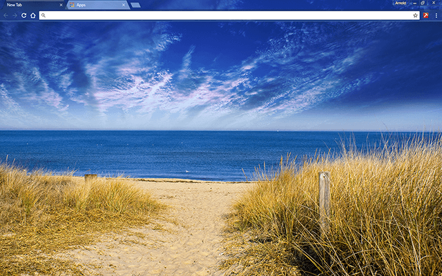 Virgina Beach USA Google Chrome Theme
