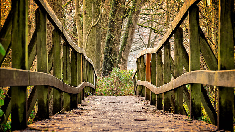 Away Bridge 4K Google Background ...