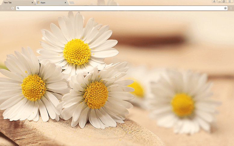 Daisy Days Google Chrome Theme