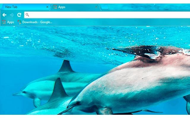 custom free dolphins chrome theme for google