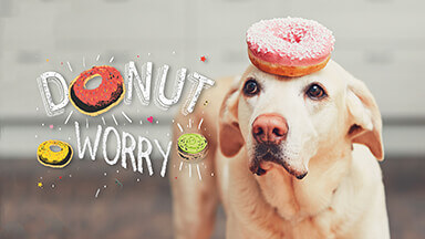 Donut Worry Google Background