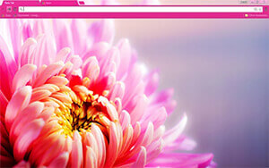 Floral Pink Chrome Theme
