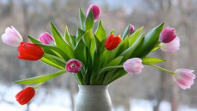 Flower Vase Google Background