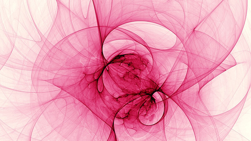 Fractal Rose Chromebook Wallpaper ...