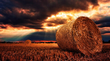 Hay Bale 4K Chromebook Wallpaper