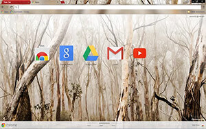 In The Woods Chrome Theme