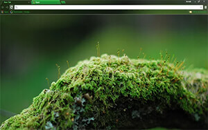 Mossy Oak Chrome Theme