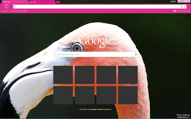 Free Pink Flamingo Google Chrome Theme
