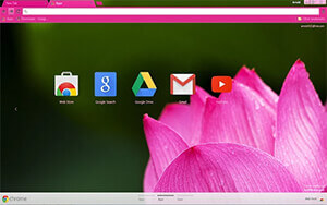 Pink Lotus Chrome Theme