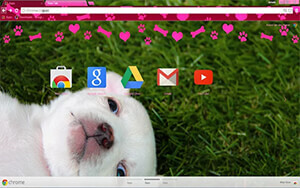 Puppy Love Chrome Theme