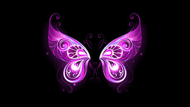 Purple Fairy Wings Google Background