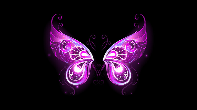 Purple Fairy Wings Google Background ...