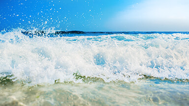 Salt Water Google Background