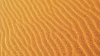 Sandy Google Background